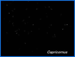 Photograph showing the constellation of Capricornus, the Sea Goat. Click for a full-size photo (Copyright Martin J Powell, 2005)