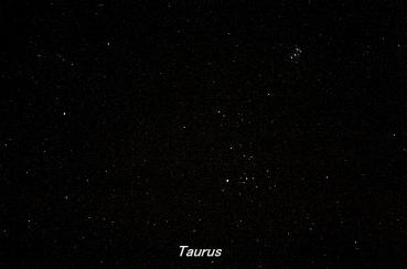 Photograph of the constellation Taurus, the Bull (click for full-size photo)