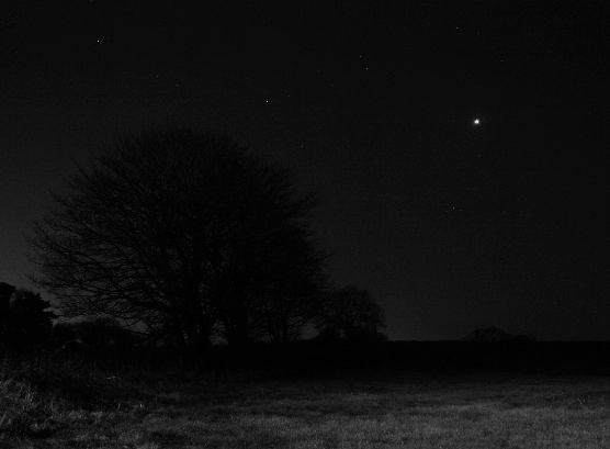 Venus as an 'Evening Star' in the Western sky in January 2009 (Copyright Martin J Powell 2009)